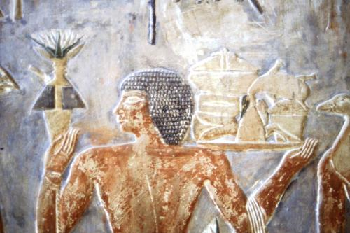 Offering bearer from the tomb of Ptahhotep at Saqqara.